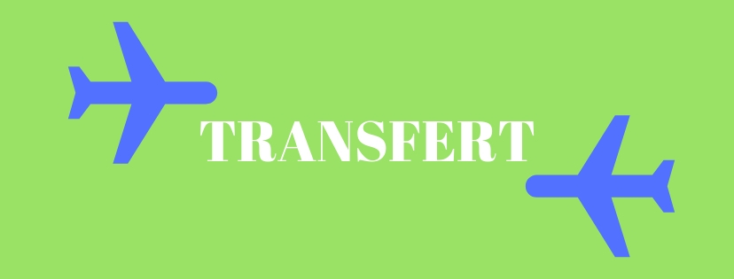 Transfert Scolarite Dsve